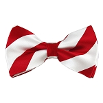 DSB-0120 | Pre-Tied Red and White College Stripe Bow Tie