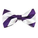 DSB-3120 | Pre-Tied Purple and White College Stripe Bow Tie