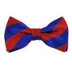 DSB-3601 | Pre-Tied Royal Blue and Red College Stripe Bow Tie