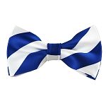 DSB-3620 | Pre-Tied Royal Blue and White College Stripe Bow Tie