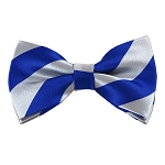 DSB-3650 | Pre-Tied Royal Blue and Silver College Stripe Bow Tie
