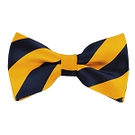DSB-5348 | Pre-Tied Navy and Gold College Stripe Bow Tie