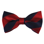 DSB-5301 | Pre-Tied Navy and Red College Stripe Bow Tie