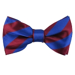 DSB-6236 | Pre-Tied Royal Blue and Burgundy College Stripe Bow Tie