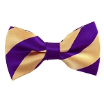 DSB-7577 | Pre-Tied Honey Gold and Plum College Stripe Bow Tie