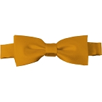 BTK-46 | Kids Solid Gold Bar Pre-Tied Bow Tie