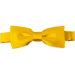 BTK-48 | Kids Solid Golden Yellow Pre-Tied Bow Tie