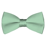 BT-66 | Solid Light Sage Green Men's Pre-Tied Bow Ties