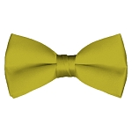 BT-47 | Solid Mustard Men's Pre-Tied Bow Ties