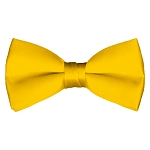 BT-48 | Solid Golden Yellow Pre-Tied Bow Tie