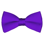 BT-77 | Solid Plum Men's Pre-Tied Bow Ties
