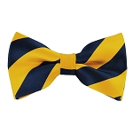 DSB-5347 | Pre-Tied Navy and Mustard College Stripe Bow Tie