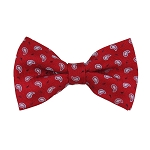BL-21 | Small Teardrop Paisleys on Red Woven Pre-Tied Bow Tie