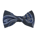 BL-24 | Royal Blue and Silver Big Floral Paisley Woven Pre-Tied Bow Tie