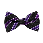 BL-27 | Purple and Plum Violet on Black Pin Dot Striped Woven Pre-Tied Bow Tie