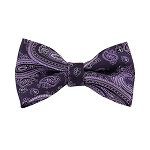BL-45 | Lavender / Purple on Eggplant Big Floral Paisley Woven Pre-Tied Bow Tie