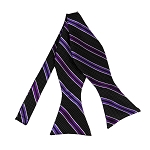 BLS-27 | Purple and Plum Violet on Black Pin Dot Striped Woven Self Tie Bow Tie
