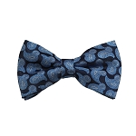 BD-04 | Light Blue, White And Navy Paisley Woven Pre-Tied Bow Tie