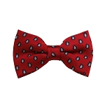 BD-07 | Grey, Black And Crimson Red Paisley Woven Pre-Tied Bow Tie