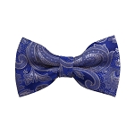 BD-20 | Silver, Grey And Blue Paisley Woven Pre-Tied Bow Tie