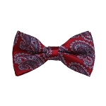 BD-23 | Grey And Red Paisley Woven Pre-Tied Bow Tie