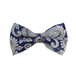 BD-41 | Silver, White And Blue Paisley Woven Pre-Tied Bow Tie