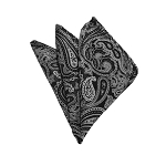HD-21 | Silver And Black Paisley Woven Handkerchief