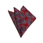 HD-23 | Grey And Red Paisley Woven Handkerchief