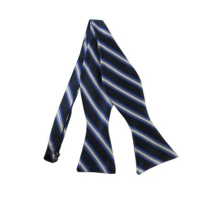 DBS-154 | Navy Blue, Royal Blue and Silver Narrow Striped Men's Woven Self Tie Bow Tie