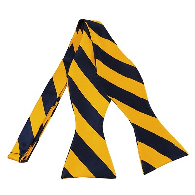 SDS-5348 | Self Tie Navy and Gold College Stripe Bow Tie
