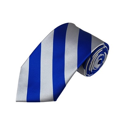 DS-3650 | Royal Blue and Silver College Stripe Woven Tie